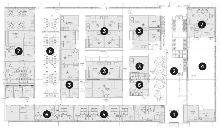 Shore Orthopaedic Floor Plan